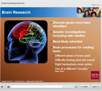 Understanding Dyslexia Brain Research.jpg